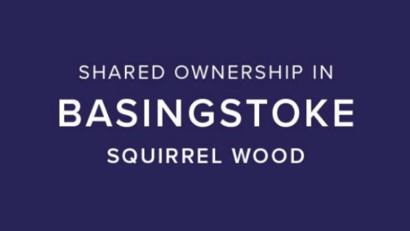 Squirrel Wood